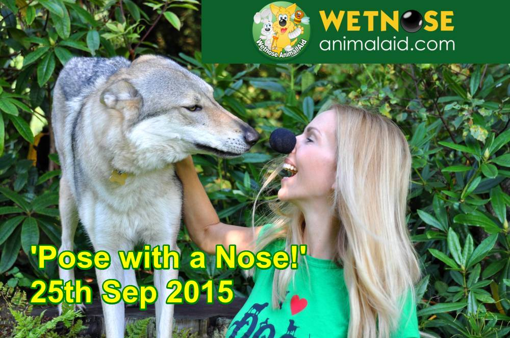 Anneka Svenska and Wolfdog for Wetnose Day 2015 - Wetnose Animal Aid
