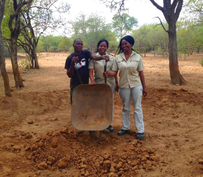 Black Mambas helping to dig mud pit for rhinos