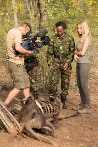 Anneka and Black Mambas discover snared Cape Buffalo