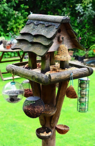 Bird-House-Feeding-Station-Bird-Table-Bird-Food-Fr-9528