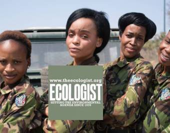 Black Mambas The Ecologist