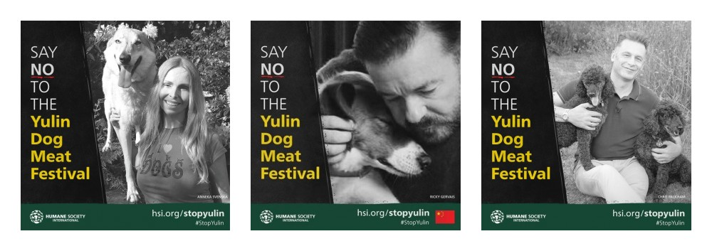 Anneka Svenska Humane Socity International Yulin Campaign Ricky Gervais Chris Packham