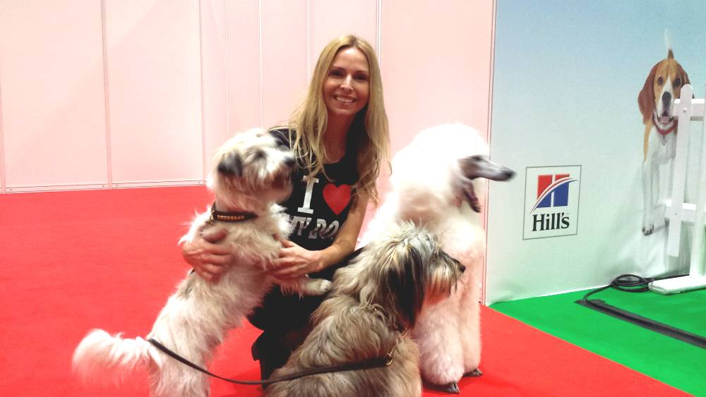 National Pet Show London Anneka Svenska Presenter Host Doc Marten dogs