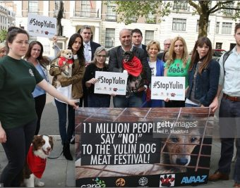 Carrie Fisher & Celebs Join HSI for #STOPYULIN Petition