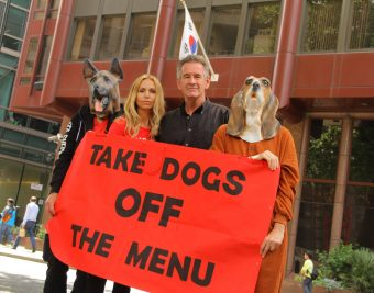Anneka Svenska and Nigel Marven. The London Boknal anti dog meat demo protest and march July 2016 #stopboknal