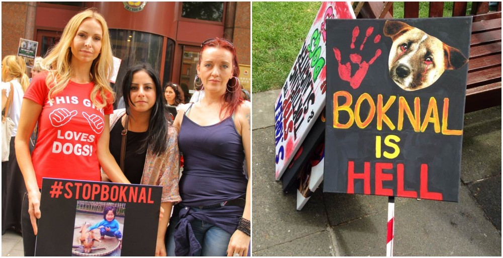 Anneka Svenska and Nigel Marven. The London Boknal anti Korean dog meat demo protest and march July 2016 #stopboknal