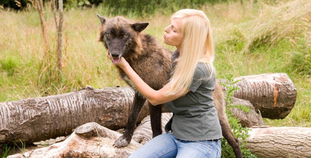 Anneka Svenska wolf wolves Wildlife presenter