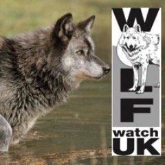 WolfWatchUK