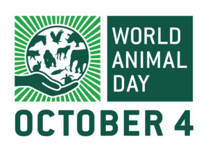 Anneka Svenska Patron for World Animal Day