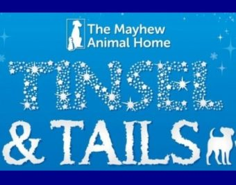 Mayhew Animal Home Tinsel & Tails Christmas Doggie Ball